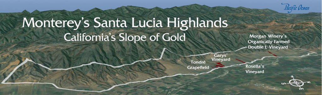 The Growing Regions of Monterey Part IIThe Santa Lucia Highlands