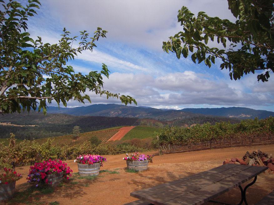 The La Sierra Picnic Grounds