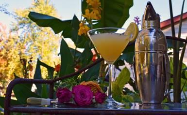 Lemon Thyme Herbal Martini