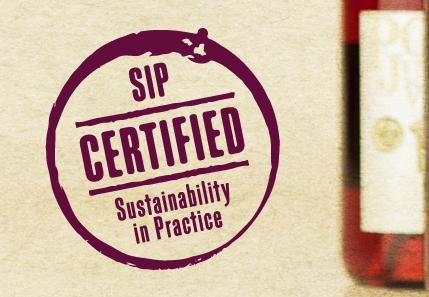 SIP logo2