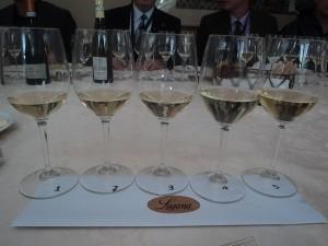 Lugana Wine Set Up